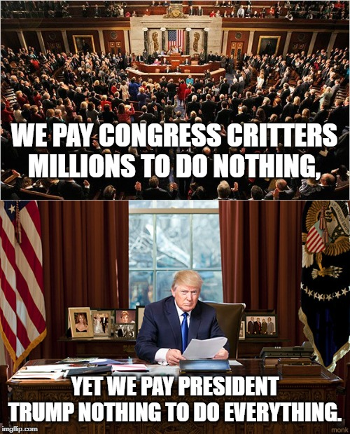 16 More Years! |  WE PAY CONGRESS CRITTERS MILLIONS TO DO NOTHING, YET WE PAY PRESIDENT TRUMP NOTHING TO DO EVERYTHING. | image tagged in congress,president trump,donaldtrump | made w/ Imgflip meme maker