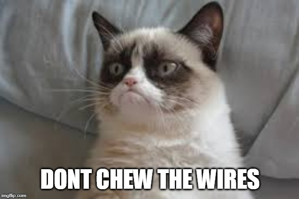 Grumpy cat | DONT CHEW THE WIRES | image tagged in grumpy cat | made w/ Imgflip meme maker