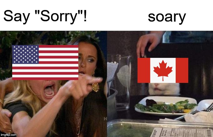 "Sorry Not Soary |  Say ""Sorry""! soary 