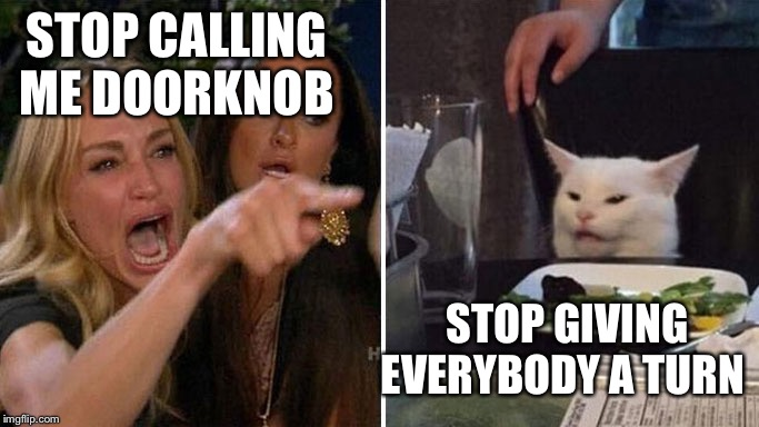 Angry lady cat | STOP CALLING ME DOORKNOB STOP GIVING EVERYBODY A TURN | image tagged in angry lady cat | made w/ Imgflip meme maker