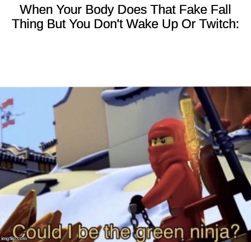 Could I Be The Green Ninja? |  When Your Body Does That Fake Fall Thing But You Don't Wake Up Or Twitch: | image tagged in could i be the green ninja | made w/ Imgflip meme maker