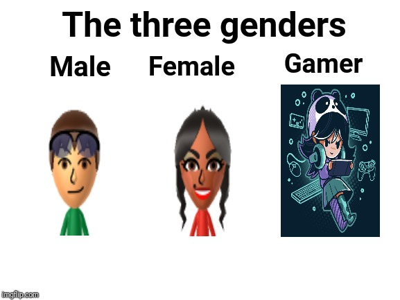 The three genders; male, female, gamer |  The three genders; Gamer; Male; Female | image tagged in blank white template,meme,memes,funny memes,funny meme,genders | made w/ Imgflip meme maker