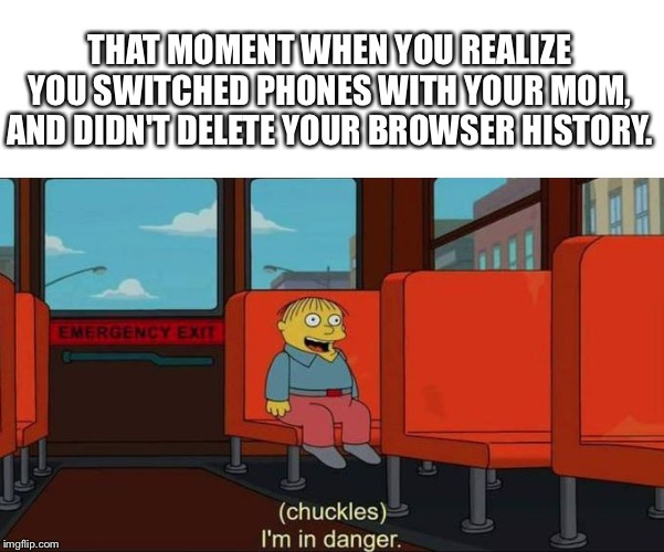 I'm in Danger + blank place above | THAT MOMENT WHEN YOU REALIZE YOU SWITCHED PHONES WITH YOUR MOM, AND DIDN'T DELETE YOUR BROWSER HISTORY. | image tagged in i'm in danger  blank place above | made w/ Imgflip meme maker