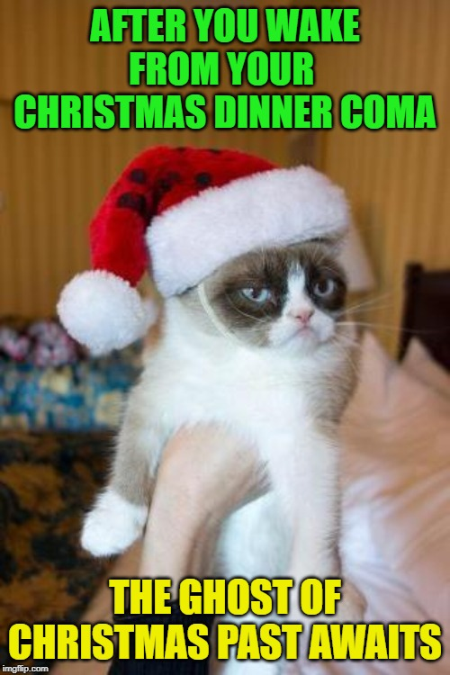Merry Christmas! Happy remembrances! | AFTER YOU WAKE FROM YOUR  CHRISTMAS DINNER COMA THE GHOST OF CHRISTMAS PAST AWAITS | image tagged in memes,grumpy cat christmas,grumpy cat,ghost of christmas past | made w/ Imgflip meme maker
