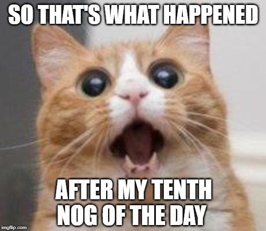 Wow | SO THAT'S WHAT HAPPENED AFTER MY TENTH NOG OF THE DAY | image tagged in wow | made w/ Imgflip meme maker