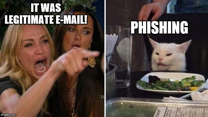 Angry lady cat | IT WAS LEGITIMATE E-MAIL! PHISHING | image tagged in angry lady cat | made w/ Imgflip meme maker