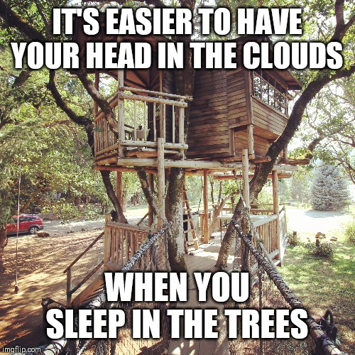 Treehouse Dreamers |  IT'S EASIER TO HAVE YOUR HEAD IN THE CLOUDS; WHEN YOU SLEEP IN THE TREES | image tagged in happy tree friends,inspirational,dreamers | made w/ Imgflip meme maker