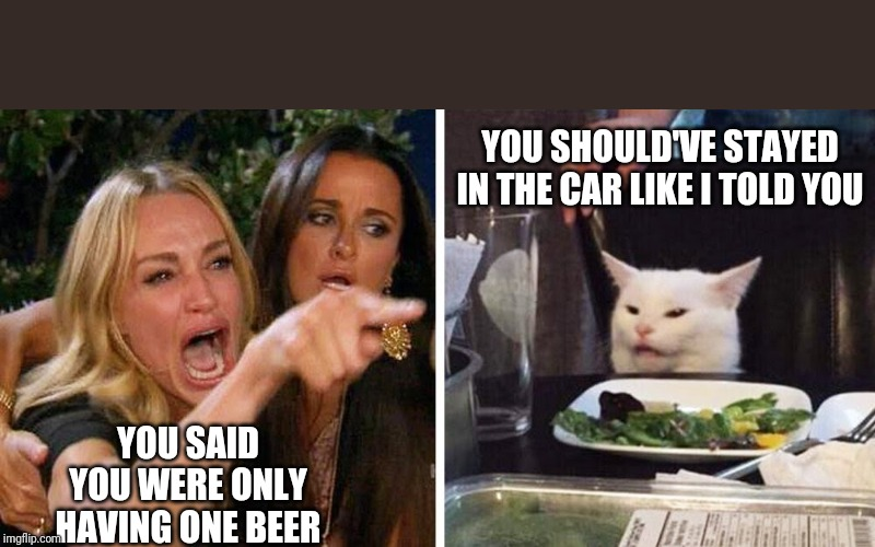 Smudge the cat | YOU SHOULD'VE STAYED IN THE CAR LIKE I TOLD YOU YOU SAID YOU WERE ONLY HAVING ONE BEER | image tagged in smudge the cat | made w/ Imgflip meme maker
