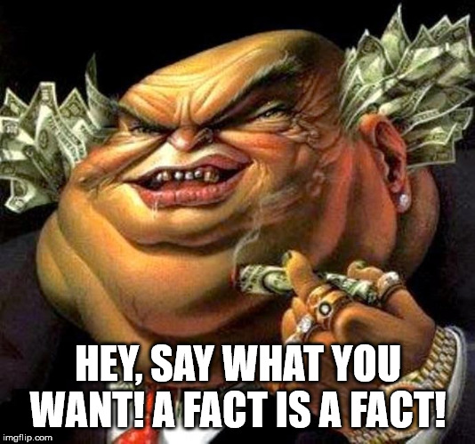 capitalist criminal pig | HEY, SAY WHAT YOU WANT! A FACT IS A FACT! | image tagged in capitalist criminal pig | made w/ Imgflip meme maker