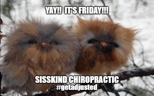 Yay! It's Friday!! | YAY!!  IT'S FRIDAY!!! SISSKIND CHIROPRACTIC #getadjusted | image tagged in yay it's friday | made w/ Imgflip meme maker