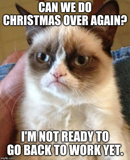 Grumpy Cat | CAN WE DO CHRISTMAS OVER AGAIN? I'M NOT READY TO GO BACK TO WORK YET. | image tagged in memes,grumpy cat | made w/ Imgflip meme maker