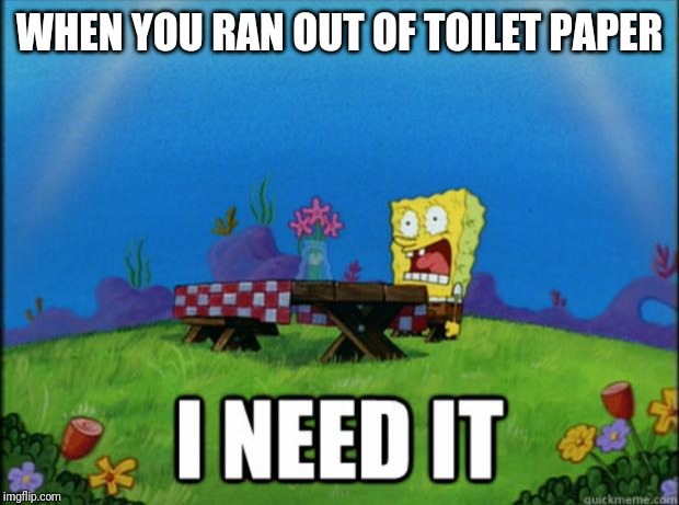 spongebob I need it | WHEN YOU RAN OUT OF TOILET PAPER | image tagged in spongebob i need it | made w/ Imgflip meme maker
