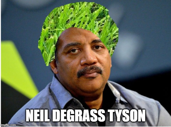 Neil DeGrass |  NEIL DEGRASS TYSON | image tagged in neil degrasse tyson,grass,memes | made w/ Imgflip meme maker
