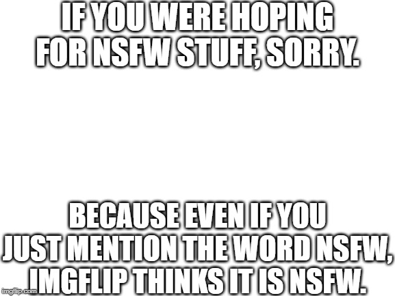 This meme shows why the NSFW system is broken |  IF YOU WERE HOPING FOR NSFW STUFF, SORRY. BECAUSE EVEN IF YOU JUST MENTION THE WORD NSFW, IMGFLIP THINKS IT IS NSFW. | image tagged in blank white template,maybe don't view nsfw,memes,funny memes,no logic,why | made w/ Imgflip meme maker