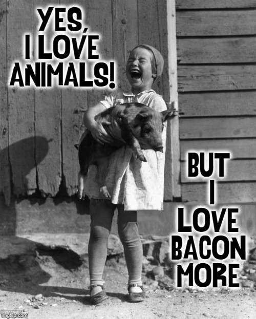 In Defense of We Carnivores | YES, I LOVE ANIMALS! BUT  I LOVE BACON MORE | image tagged in vince vance,pigs,bacon,pets,vegans,meat lovers | made w/ Imgflip meme maker