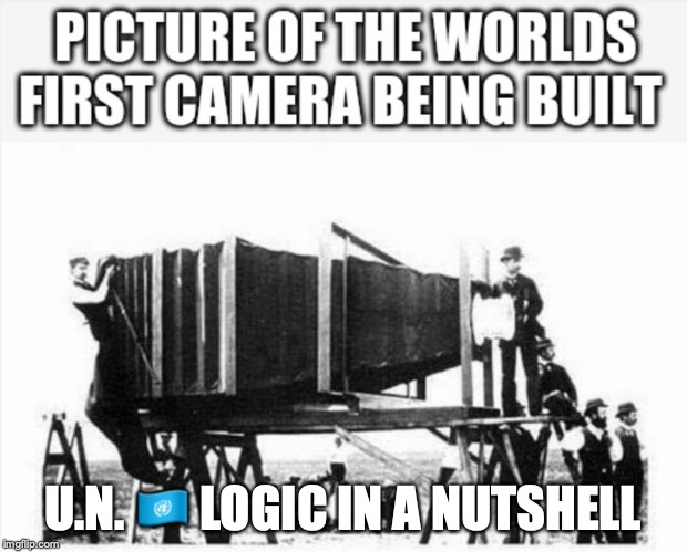 UN LOGIC | U.N. ?? LOGIC IN A NUTSHELL | image tagged in logic,illogical,spock illogical | made w/ Imgflip meme maker