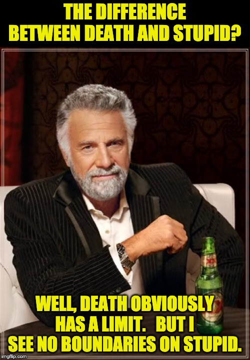 The Most Interesting Man In The World |  THE DIFFERENCE BETWEEN DEATH AND STUPID? WELL, DEATH OBVIOUSLY HAS A LIMIT.   BUT I SEE NO BOUNDARIES ON STUPID. | image tagged in memes,the most interesting man in the world | made w/ Imgflip meme maker