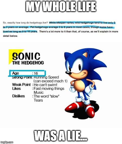 My life is a lie. | MY WHOLE LIFE WAS A LIE... | image tagged in sonic the hedgehog,my life is a lie,age | made w/ Imgflip meme maker