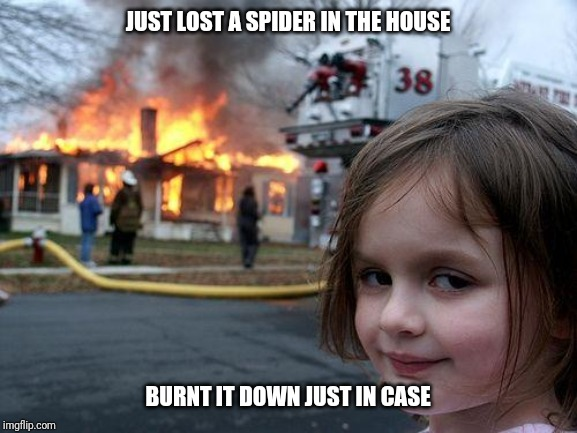 Disaster Girl | JUST LOST A SPIDER IN THE HOUSE BURNT IT DOWN JUST IN CASE | image tagged in memes,disaster girl,lost,spider | made w/ Imgflip meme maker