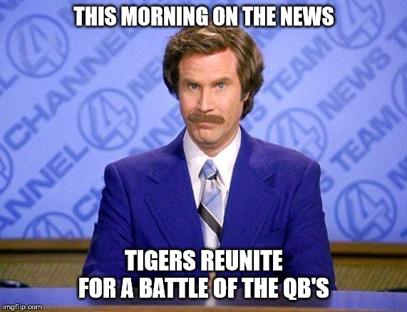 anchorman news update |  THIS MORNING ON THE NEWS; TIGERS REUNITE FOR A BATTLE OF THE QB'S | image tagged in anchorman news update | made w/ Imgflip meme maker
