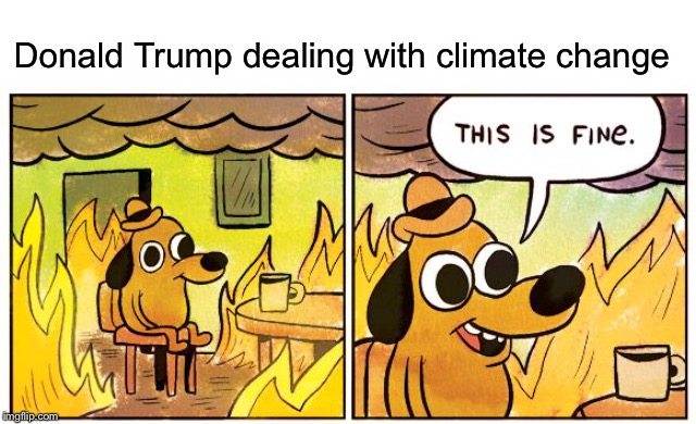 Climate change is real | Donald Trump dealing with climate change | image tagged in this is fine dog,funny,memes,donald trump,climate change | made w/ Imgflip meme maker