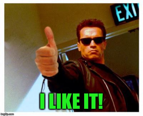 terminator thumbs up | I LIKE IT! | image tagged in terminator thumbs up | made w/ Imgflip meme maker