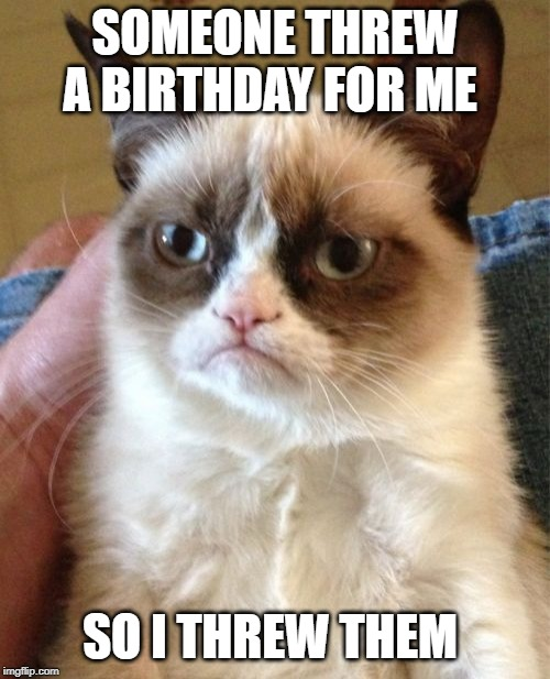 Grumpy Cat | SOMEONE THREW A BIRTHDAY FOR ME SO I THREW THEM | image tagged in memes,grumpy cat | made w/ Imgflip meme maker