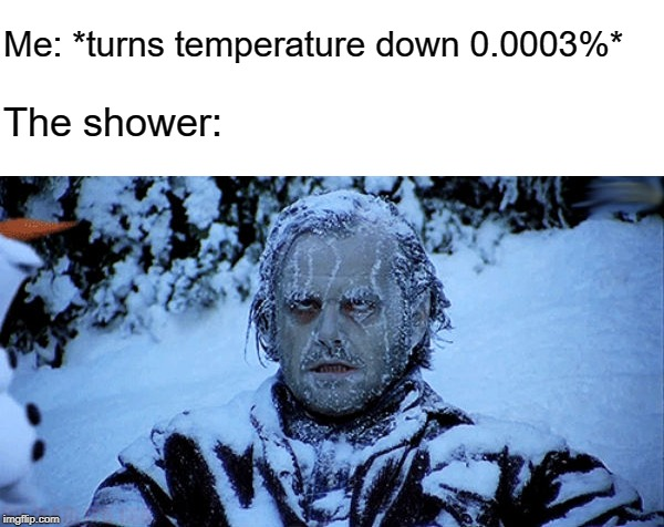 Freezing cold |  Me: *turns temperature down 0.0003%*; The shower: | image tagged in freezing cold | made w/ Imgflip meme maker
