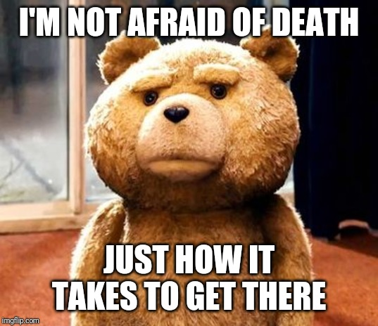 Notvafridbofbdeath |  I'M NOT AFRAID OF DEATH; JUST HOW IT TAKES TO GET THERE | image tagged in memes,ted,death | made w/ Imgflip meme maker