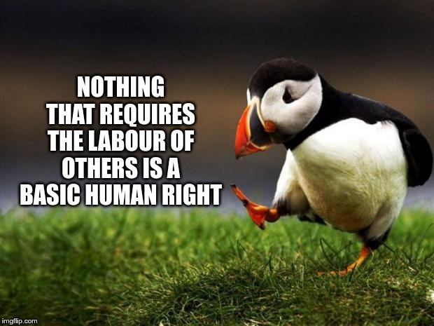 Unpopular Opinion Puffin |  NOTHING THAT REQUIRES THE LABOUR OF OTHERS IS A BASIC HUMAN RIGHT | image tagged in memes,unpopular opinion puffin | made w/ Imgflip meme maker