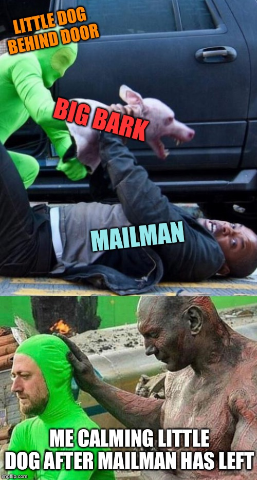 I am Legend- Guardian of the House |  LITTLE DOG BEHIND DOOR; BIG BARK; MAILMAN; ME CALMING LITTLE DOG AFTER MAILMAN HAS LEFT | image tagged in movie,magic,dog,mailman,will smith,guardians of the galaxy | made w/ Imgflip meme maker