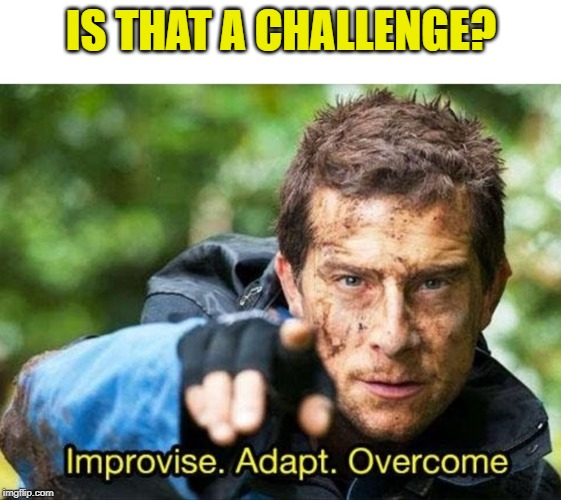 Bear Grylls Improvise Adapt Overcome | IS THAT A CHALLENGE? | image tagged in bear grylls improvise adapt overcome | made w/ Imgflip meme maker