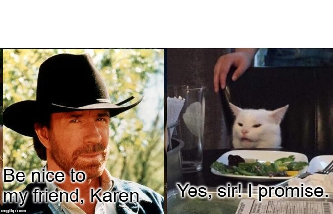 Woman Yelling At Cat |  Be nice to my friend, Karen; Yes, sir! I promise. | image tagged in memes,woman yelling at cat | made w/ Imgflip meme maker