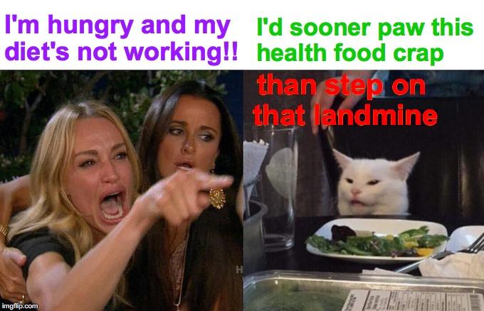 Better Left Unsaid | I'm hungry and my diet's not working!! I'd sooner paw this health food crap than step on   that landmine | image tagged in memes,woman yelling at cat,angry lady cat,diet,salad,you don't say | made w/ Imgflip meme maker