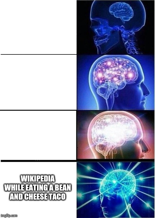 WIKIPEDIA WHILE EATING A BEAN AND CHEESE TACO | image tagged in memes,expanding brain | made w/ Imgflip meme maker