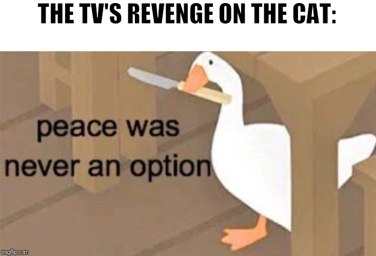 Untitled Goose Peace Was Never an Option | THE TV'S REVENGE ON THE CAT: | image tagged in untitled goose peace was never an option | made w/ Imgflip meme maker