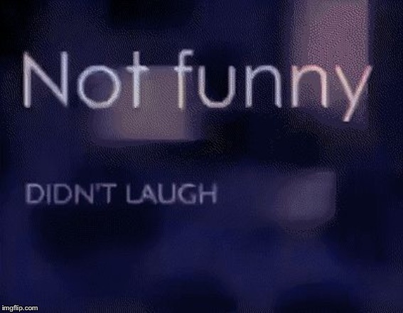 Not funny didn't laugh | image tagged in not funny didnt laugh | made w/ Imgflip meme maker