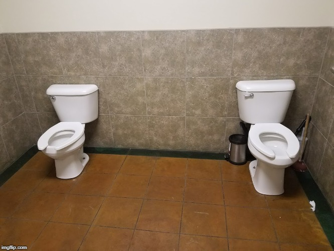 Image tagged in two toilets,seriously - Imgflip