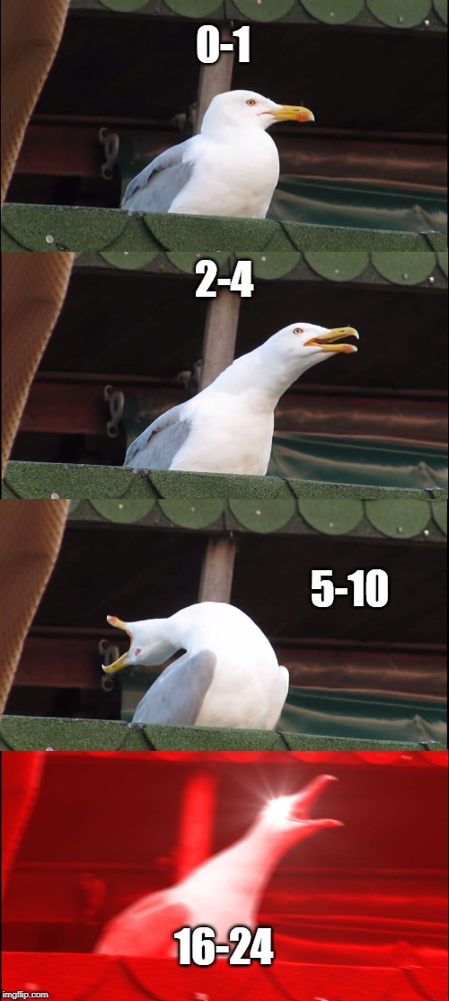0-1 2-4 5-10 16-24 | image tagged in memes,inhaling seagull | made w/ Imgflip meme maker