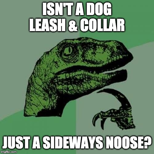 Philosoraptor | ISN'T A DOG LEASH & COLLAR JUST A SIDEWAYS NOOSE? | image tagged in memes,philosoraptor,dog,noose | made w/ Imgflip meme maker