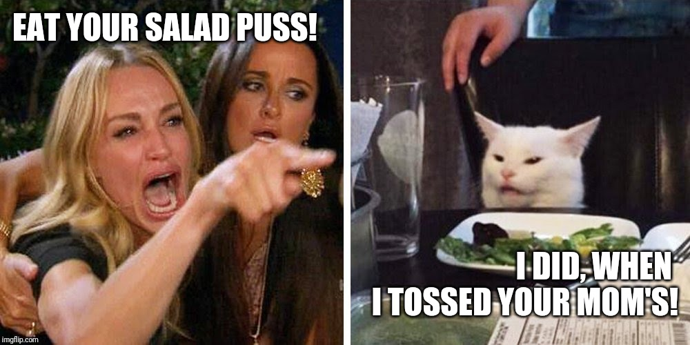 Smudge the cat |  EAT YOUR SALAD PUSS! I DID, WHEN  I TOSSED YOUR MOM'S! | image tagged in smudge the cat | made w/ Imgflip meme maker
