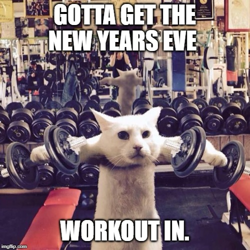 Gym Cat | GOTTA GET THE NEW YEARS EVE WORKOUT IN. | image tagged in gym cat | made w/ Imgflip meme maker