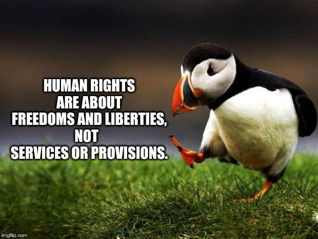 Human Rights |  HUMAN RIGHTS ARE ABOUT FREEDOMS AND LIBERTIES, NOT   SERVICES OR PROVISIONS. | image tagged in memes,unpopular opinion puffin,freedom,liberties | made w/ Imgflip meme maker