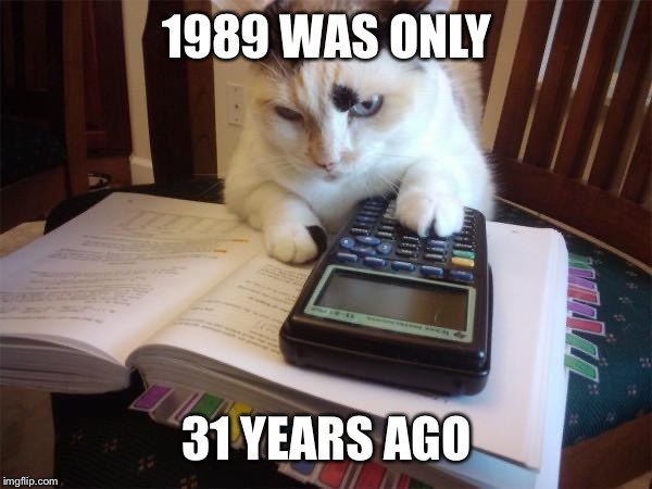 Math cat | 1989 WAS ONLY 31 YEARS AGO | image tagged in math cat | made w/ Imgflip meme maker