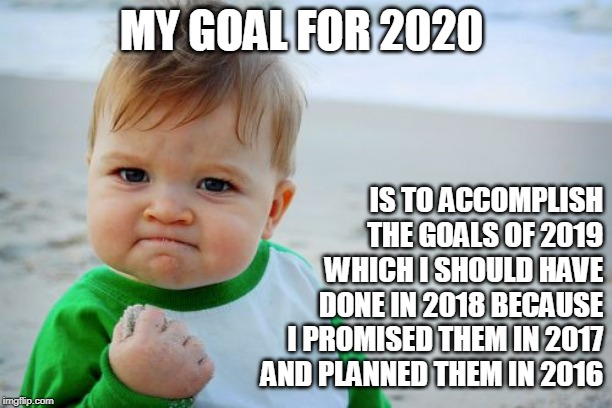 Success Kid Original | MY GOAL FOR 2020 IS TO ACCOMPLISH THE GOALS OF 2019 WHICH I SHOULD HAVE DONE IN 2018 BECAUSE I PROMISED THEM IN 2017 AND PLANNED THEM IN 201 | image tagged in memes,success kid original | made w/ Imgflip meme maker