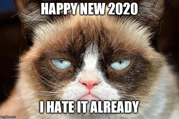 Grumpy Cat Not Amused |  HAPPY NEW 2020; I HATE IT ALREADY | image tagged in memes,grumpy cat not amused,grumpy cat | made w/ Imgflip meme maker
