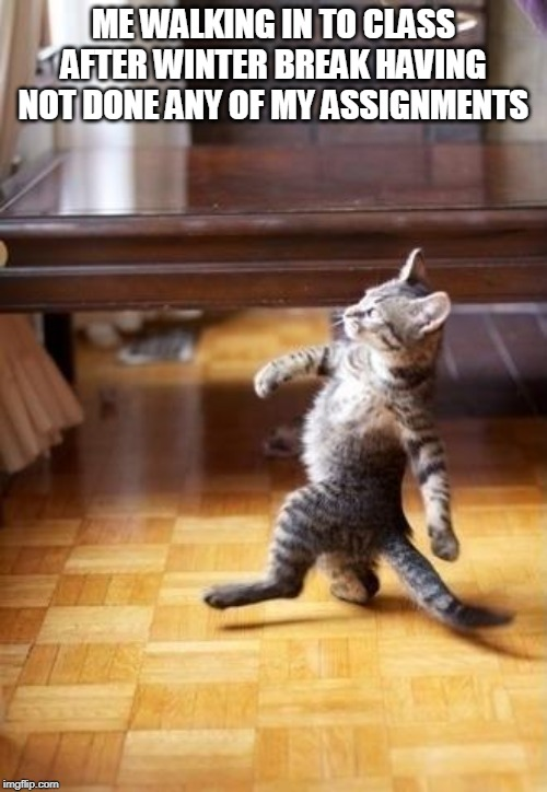 Cool Cat Stroll |  ME WALKING IN TO CLASS AFTER WINTER BREAK HAVING NOT DONE ANY OF MY ASSIGNMENTS | image tagged in memes,cool cat stroll | made w/ Imgflip meme maker