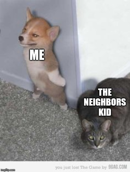 #HidingForMyLife |  ME; THE NEIGHBORS KID | image tagged in scary cat,neighbors kid,memes,funny | made w/ Imgflip meme maker