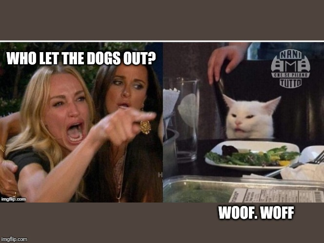 white cat table |  WHO LET THE DOGS OUT? WOOF. WOFF | image tagged in white cat table | made w/ Imgflip meme maker