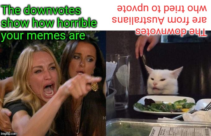 Woman Yelling At Cat Meme | The downvotes show how horrible your memes are The downvotes are from Australians who tried to upvote | image tagged in memes,woman yelling at cat | made w/ Imgflip meme maker